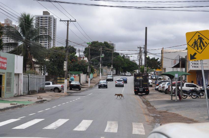 Avenidas São Sebastião e Ipiranga passam a ter sentido único